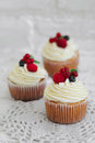 Delicious cupcakes with berries Royalty Free Stock Photo