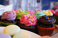 Delicious cupcakes with different colours and flavours on plate Royalty Free Stock Photos