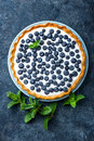 Delicious dessert blueberry tart with fresh berries and whipped cream, sweet tasty cheesecake, berry pie Royalty Free Stock Photo