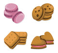 Delicious dessert chocolate cookies set collection vector illustration