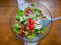 Delicious fresh salad made of tomatoes lettuce chicken and olive oil Royalty Free Stock Photo