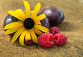 Delicious fruits close up image of fresh raspberries plums and african daisy flower placed on cracked wooden surface Royalty Free Stock Image
