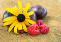 Delicious fruits close up image of fresh raspberries plums and african daisy flower placed on cracked wooden surface Royalty Free Stock Photography