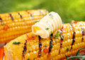 Delicious golden grilled corn on the cob served outdoors with a curl of fresh farm butter Stock Images
