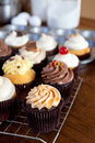 Delicious gourmet cupcakes close up of some decadent frosted with a variety of frosting flavors shallow depth of field Royalty Free Stock Image