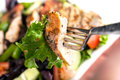 Delicious grilled chicken salad freshly prepared chef style with tomato cucumber green pepper and romaine lettuce Royalty Free Stock Photo