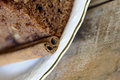 Delicious homemade chocolate brown cake with shallow depth of field Stock Images