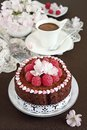 Delicious homemade chocolate cake with raspberry garnish selective focus Stock Images