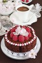 Delicious homemade chocolate cake with raspberry garnish selective focus Royalty Free Stock Image