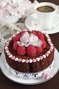 Delicious homemade chocolate cake with raspberry garnish selective focus Stock Photos