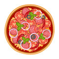 Delicious italian pizza icon with salami isolated on white