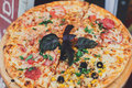 Delicious italian pizza with pepperoni, ham, corns and black olives Royalty Free Stock Photo