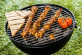 Delicious meat kebabs grilling on a bbq fire three with slices of toast and tomatoes during summer picnic in the garden close up Stock Images
