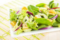 Delicious mix salad. Stock Images