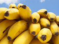 Delicious Ripe Bananas Royalty Free Stock Photos