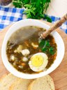 Delicious soup with sorrel egg on white bowl Royalty Free Stock Photography