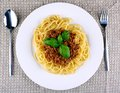 Delicious spaghetti bolognese with basil on white plate Royalty Free Stock Photo