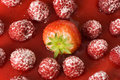 Delicious strawberry between juicy raspberries Stock Photography