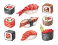 Delicious sushi watercollor illustrations on white Stock Photos