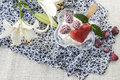 Delicious, sweet dessert, ice cream with raspberries Royalty Free Stock Photo