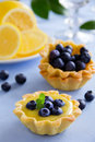 Delicious tarts with lemon cream and blueberries Stock Images