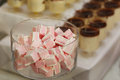 Delicious and tasty gum candy at dessert wedding table close up Royalty Free Stock Photo