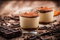 Delicious tiramisu dessert Royalty Free Stock Photo