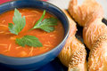 Delicious tomato soup Royalty Free Stock Photo