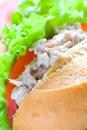 Delicious tuna and mayonnaise sandwich Royalty Free Stock Photos