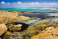 Delightful Rockpools Royalty Free Stock Images