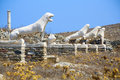 Delos the island of an important archaeological site in greece Royalty Free Stock Images