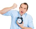 Demanding boss deadline closeup portrait of angry business man funny looking guy holding alarm clock screaming requesting Royalty Free Stock Photo
