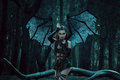 A demon with bat wings girl vampire succubus through the dark forest girl walking huge and sexy outfit Royalty Free Stock Photos
