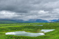 Denali highway pond and mountain in alaska usa Royalty Free Stock Photos