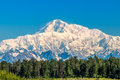 Denali Royalty Free Stock Photo