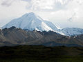 Denali national park alaska s is filled with beautiful rugged snow capped mountains and barren tundra Royalty Free Stock Image