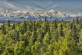 Denali park mount mc kinley panorama alaska Royalty Free Stock Image