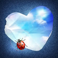 Denim background with a paper heart blue sky and ladybug card template Royalty Free Stock Photo