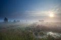 Dense fog over marsh at sunrise in autumn Royalty Free Stock Photography