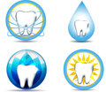 Dental care and nature healthy teeth symbols various designs beautiful bright designs isolated on a white background Stock Image