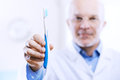 Dental hygiene and prevention dentist showing a tootbrush concept Royalty Free Stock Photo