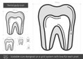 Dental pulp line icon.