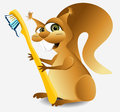 Dental squirrel concept of mascot of Stock Image