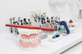 Dental tools closeup of a and plastic jaw Royalty Free Stock Image