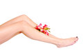 Depilation womans legs after with sprig of flowers Royalty Free Stock Photo