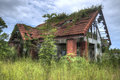Derelict house in overgrown garden constructed of brick and with red pan tiles part of the roof is absent and creeper is growing Stock Images