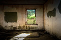Derelict room with window looking out on overgrown area Stock Photos
