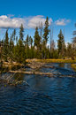 The Deschutes River Stock Photo