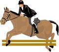 Desenho bonito, cavalo de corrida Foto de Stock