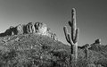 Desert cactus and mountain panorama a saguaro view part of the apache trail in the american southwest east of phoenix arizona Royalty Free Stock Image